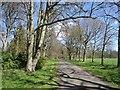 NU0412 : Road through Eslington Park by Richard Webb