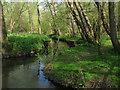 TL9721 : Roman River Valley Nature Reserve by Roger Jones