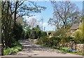 NT9932 : A sunny spring day in Doddington by Barbara Carr