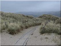 SH5631 : Board walk through the dunes at Harlech by Gareth James