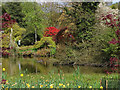 TQ3431 : Wakehurst Place: Mansion Pond by Alan Hunt