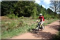 SK6271 : Cycling in Clumber Park by Graham Hogg