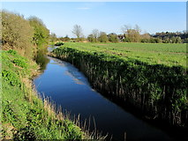 TQ9018 : Water Channel beside Station Road by Chris Heaton