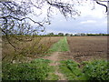 TM2866 : Footpath to Clay Hill by Adrian Cable