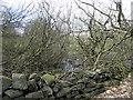 SE1544 : Former Mill dam above Burley Woodhead by Michael Steele