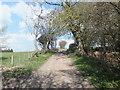 SJ2436 : Unmade road heading east by John Haynes