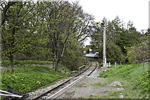 NJ4250 : Signal and bridge on the Keith and Dufftown Railway by Peter Moore
