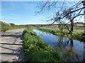 SU5471 : River Pang and Brocks Lane by Des Blenkinsopp