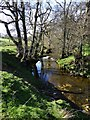 NU1417 : Small waterfall on Shipley Burn by Russel Wills