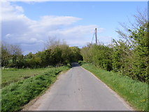 TM3886 : Tooks Common Lane, Ilketshall St.Andrew by Adrian Cable