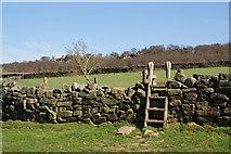 SE2065 : Stile near High North Pasture Farm by Bill Boaden