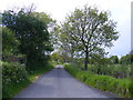 TM3887 : Mill Lane, Ilketshall St.Andrew by Geographer