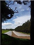NT6378 : East Lothian Landscape : Framed by Richard West