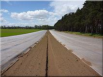 NT6378 : East Lothian Landscape : Chocks Away! by Richard West