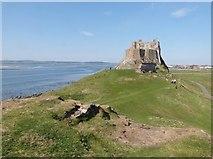 NU1341 : Lindisfarne Castle. Holy Island by Derek Voller