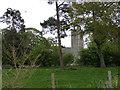 TM3687 : St.John's Church, Ilketshall St.John by Geographer