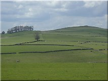 SK1462 : View towards Carder Low from the Tissington Trail by Andrew Hill