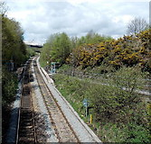 ST1599 : A view north from Angel Lane railway bridge, Gilfach by Jaggery