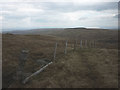 NY4908 : Fence corner on Tarn Crag by Karl and Ali