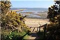 SZ4598 : Steps to the beach by Steve Daniels