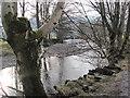 NY3304 : River Brathay by Les Hull