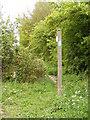 TM3989 : Footpath to Laurels Farm by Adrian Cable