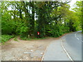 SU9783 : Two footpaths meet on the western side of West End Lane by Shazz