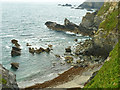 SW5843 : Mutton Cove by Robin Webster