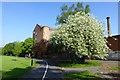 SK4833 : Bird Cherry and Harrington Mill by David Lally