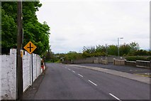R2838 : The R523 (Main Street) at Ardagh, Co. Limerick by P L Chadwick