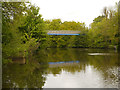 TQ7556 : River Medway, Footbridge at Whatman Park by David Dixon