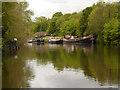 TQ7558 : River Medway, Sandling by David Dixon