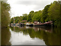 TQ7558 : River Medway, Barges by David Dixon