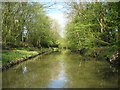 SP6284 : Grand Union Canal: Leicester Section by Nigel Cox