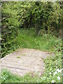 TM3587 : Footbridge of the Scotchman's Lane Byway by Adrian Cable