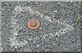 J3873 : Survey mark, Knock, Belfast by Albert Bridge