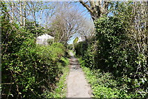 TQ8115 : The 1066 Country Walk leading to New Cut, Westfield by Tim Heaton