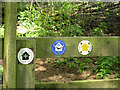 NU0638 : Waymarks next to a stile, Buckton Moor by Graham Robson
