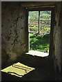 SD6988 : A window at Roantree by Karl and Ali
