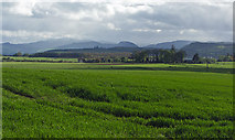 NH5757 : Productive Black Isle farmland by Julian Paren