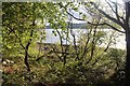 NN0803 : Spring foliage begins to hide Loch Fyne from the main road at Colliechaol by Alan Reid