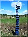 NS8532 : Millennium Milepost by Mary and Angus Hogg