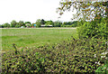 TM2390 : View towards Primrose Farm, Shelton Green by Evelyn Simak
