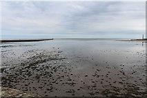 NU0052 : River Tweed by Billy McCrorie