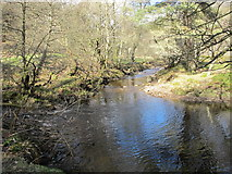 NY9449 : The confluence of Beldon Burn and Nookton Burn by Mike Quinn