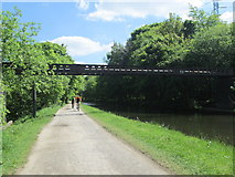 SE2436 : Pipeline over Leeds-Liverpool Canal - Newlay Locks - Bramley Fall Park by Betty Longbottom