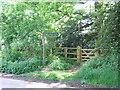 TQ5696 : Public footpath near Bentley, Essex by Malc McDonald