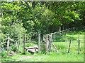 TQ3417 : Footpath and stile near Burgess Hill by Malc McDonald