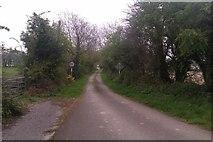 X1180 : Narrow road near Youghal Bridge by Hywel Williams