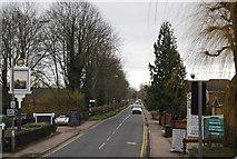 TL3808 : Dobb's Weir Rd by N Chadwick